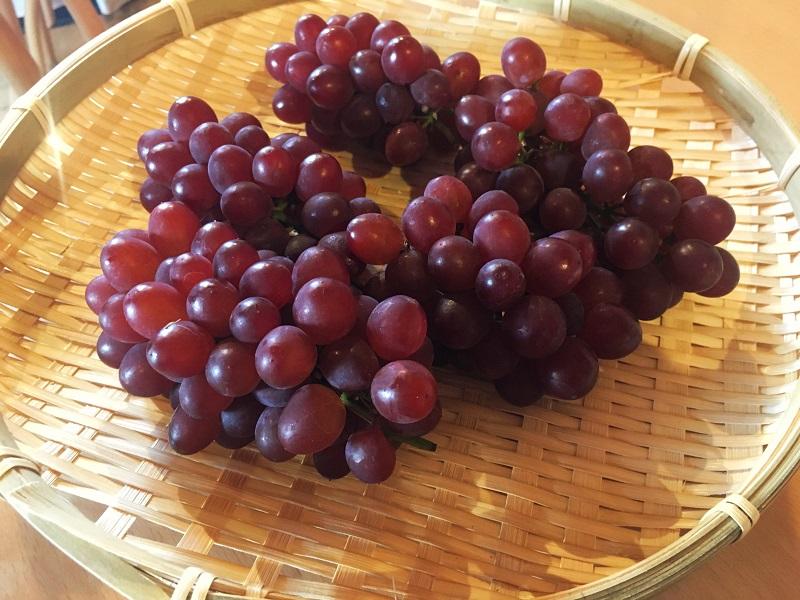 松本市浅間温泉わいわい広場、葡萄入荷しました。